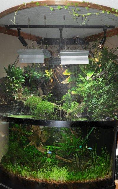 tank 12-2011 2 1.jpg
