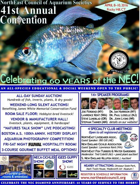 NEC 2016 Convention Flyer 2-4-16.jpg