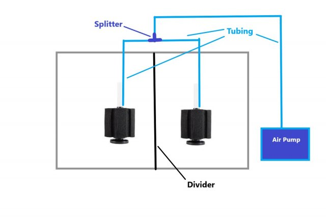 Tank divider.jpg