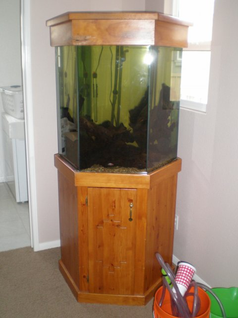 90 gallon glass hexagon for sale for 90 gallon fish tank stand