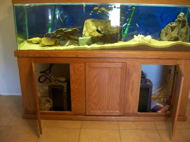What should I pay for 125 gallon used from craigslist